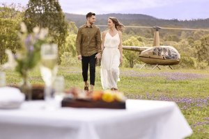 Wineries to Explore by Air…..